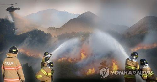 산불 발생(PG) [제작 이태호]