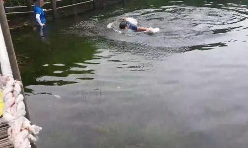 한라산 사라오름 산정호수에서 수영하는 탐방객 [인터넷 커뮤니티 SLR클럽 캡처. 재판매 및 DB 금지]