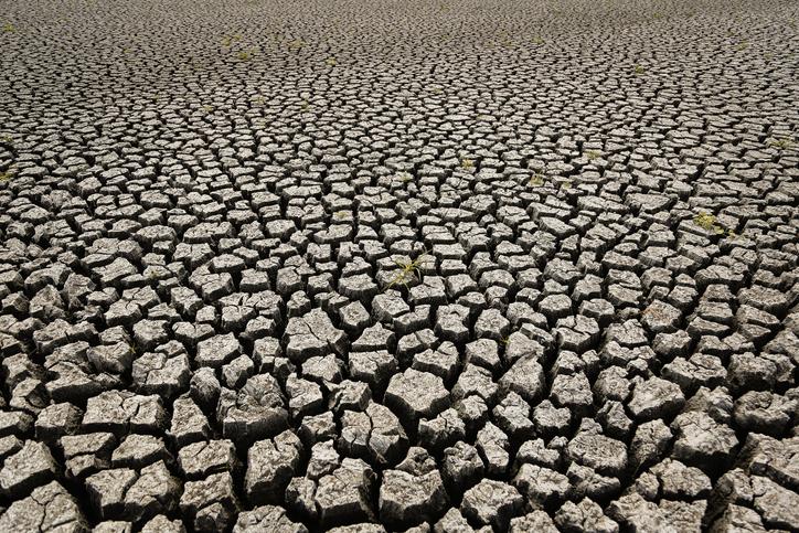 지구에서 인류 손길 벗어난 '온전한' 땅, 28% 남았다[팡팡 토토|bis코리아 토토]