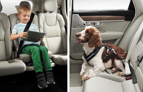 XC90에 장착된 어린이 부스터 시트(왼쪽). 볼보 차의 기존 안전벨트에 연결해서 활용하는 '반려동물 안전벨트'.