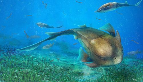 실루리아기 말기에 바다를 누볐을 것으로 추정되는 칠링유 로스트라타 상상도 [양딩화 제공]