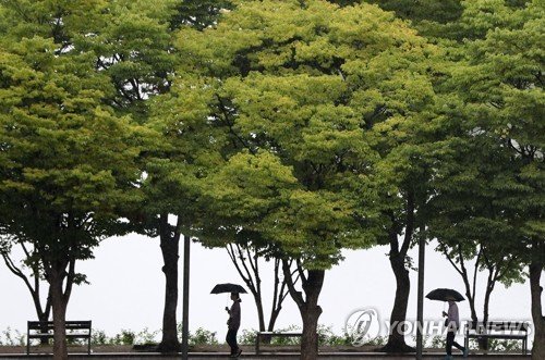 [내일날씨] 전국에 비..일부 지역 돌풍·천둥·번개도