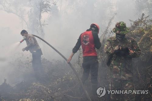 인도네시아 산불 진화 현장 [AFP=연합뉴스]