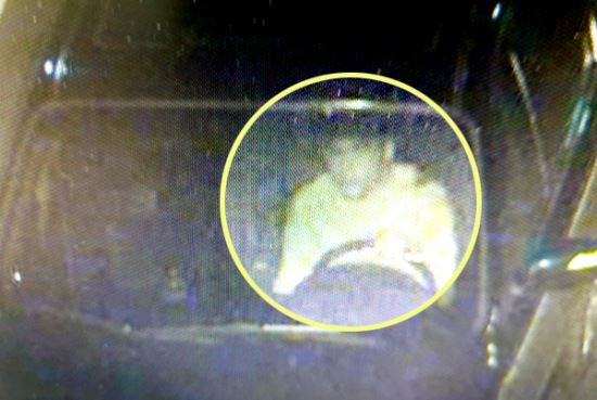 경남 창원시 용원동 뺑소니사고 운전자 CCTV 화면. 장현덕씨 제공