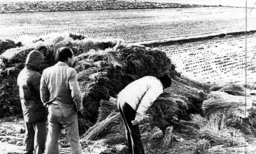1987년 1월 5차 사건 현장인 경기 화성 황계리 현장을 경찰이 살펴보고 있는 모습. 화성=연합뉴스
