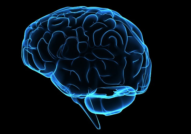 한 번 손상된 뇌 조직은 다시 좋아지지 않지만, 시간이 지나면 손상된 부분의 기능을 다른 정상적인 조직이 도와줘 증상이 좋아질 수 있다./사진=클립아트코리아