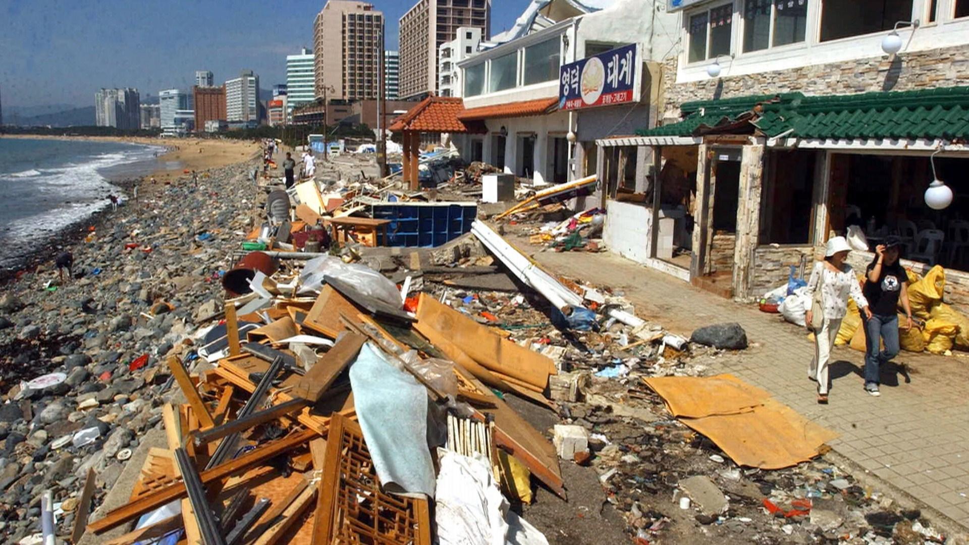 한반도 강타한 역대급 태풍들..어떤 피해 남겼나[로그인 토토|마작족보]