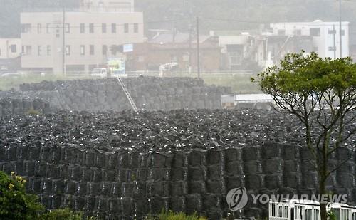 2015년 9월 10일 후쿠시마현 도미오카마치(富岡町)의 연안에 제염 폐기물을 담은 자루가 쌓여 있다. [교도=연합뉴스 자료사진]