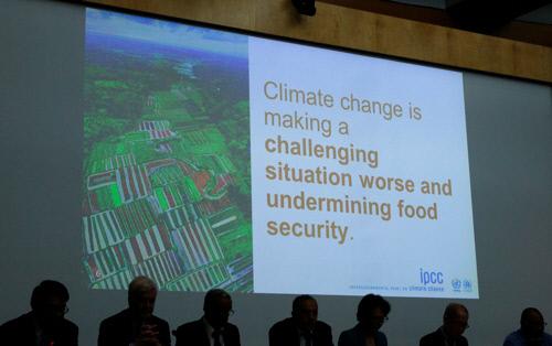 지난 8월8일 스위스 제네바에서 열린 IPCC '기후변화와 토지 특별보고서' 제50차 총회의 사진. 로이터