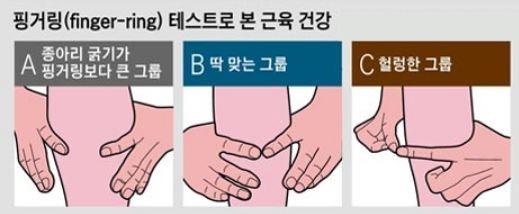 손을 이용해 종아리 둘레를 재는 '핑거링 테스트'를 해보면 자신의 근감소증 위험 정도를 알 수 있다./사진=조선일보 DB