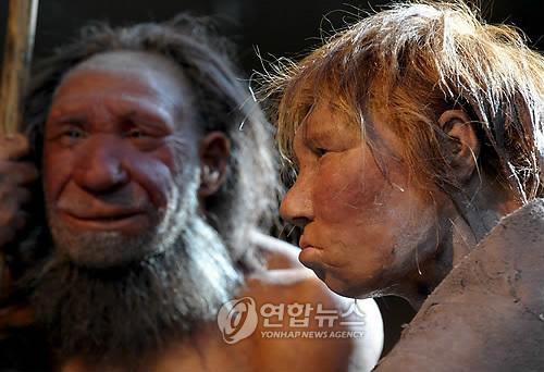 4만년 전에 멸종해버린 사람의 한 종인 네안데르탈의 모형[EPA=연합뉴스 자료사진]