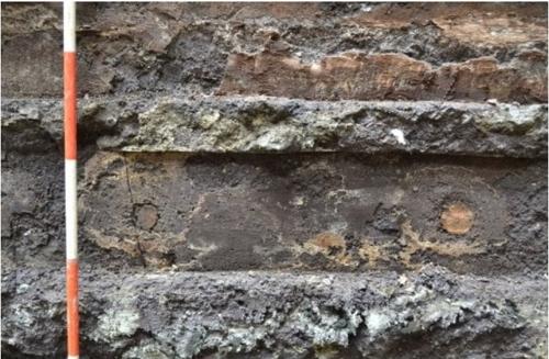 로마 지하철 공사장에서 발견된 2천년 전 추정 떡갈나무 목재. [일간 라 레푸블리카]