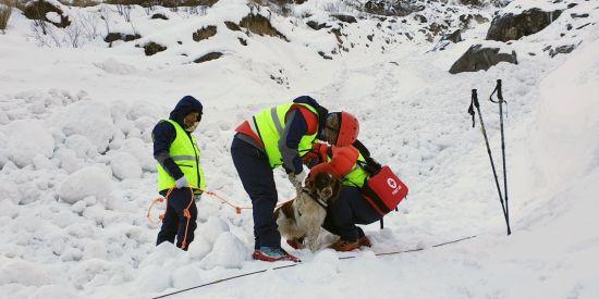 네팔 안나푸르나 실종자 4명 수색, 잠정 중지..수색 인력·장비 운용 어려움
