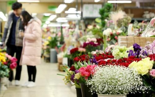 졸업 시즌 앞둔 꽃시장 [연합뉴스 자료사진]