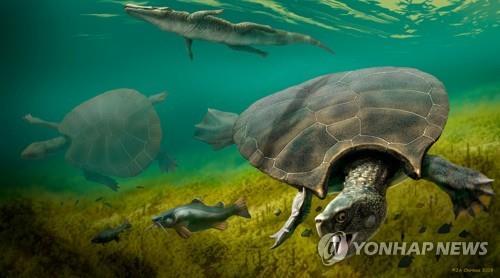 초대형 고대 거북 스투펜데미스 상상도 왼쪽은 뿔이 달리지 않은 암컷. [ J.A. Chirinos/로이터 = 연합뉴스]