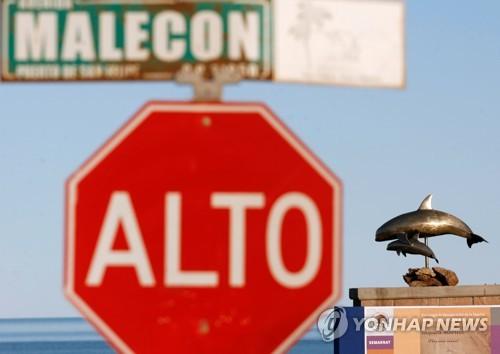 멕시코 해변의 바키타 돌고래 조형물 [로이터=연합뉴스 자료사진]