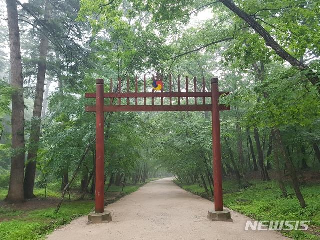 [서울=뉴시스] 광릉 숲길.(사진=문화재청 제공) 2020.4.27 photo@newsis.com