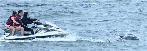 남방큰돌고래 뒤쫓는 제트스키 [연합뉴스 자료사진]