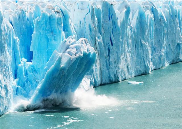 지구온난화로 인한 기후변화 속도는 바닷속이 육상보다 4배나 빠르다. 이 같은 기후변화의 압력은 바다거북 같은 생물의 생존을 위협한다. 이 때문에 육상, 해상의 많은 동식물들이 기후변화에서 살아남기 위해 현재 거주 지역보다 고위도 지역으로 이동하고 있다는 사실이 밝혀졌다.해양대기관리청(NOAA) 제공