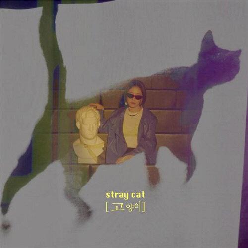25일(목), 버디(BUDY) 싱글 앨범 '고양이(stray cat)' 발매 | 인스티즈