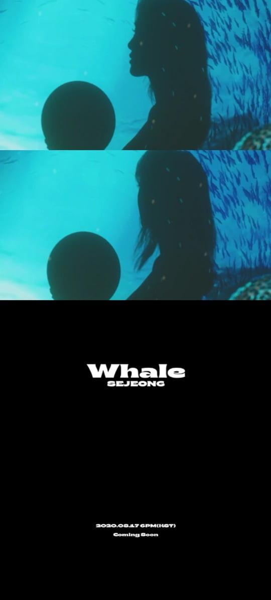 17일(월), 세정 디지털 싱글 'Whale (웨일)' 발매   인스티즈