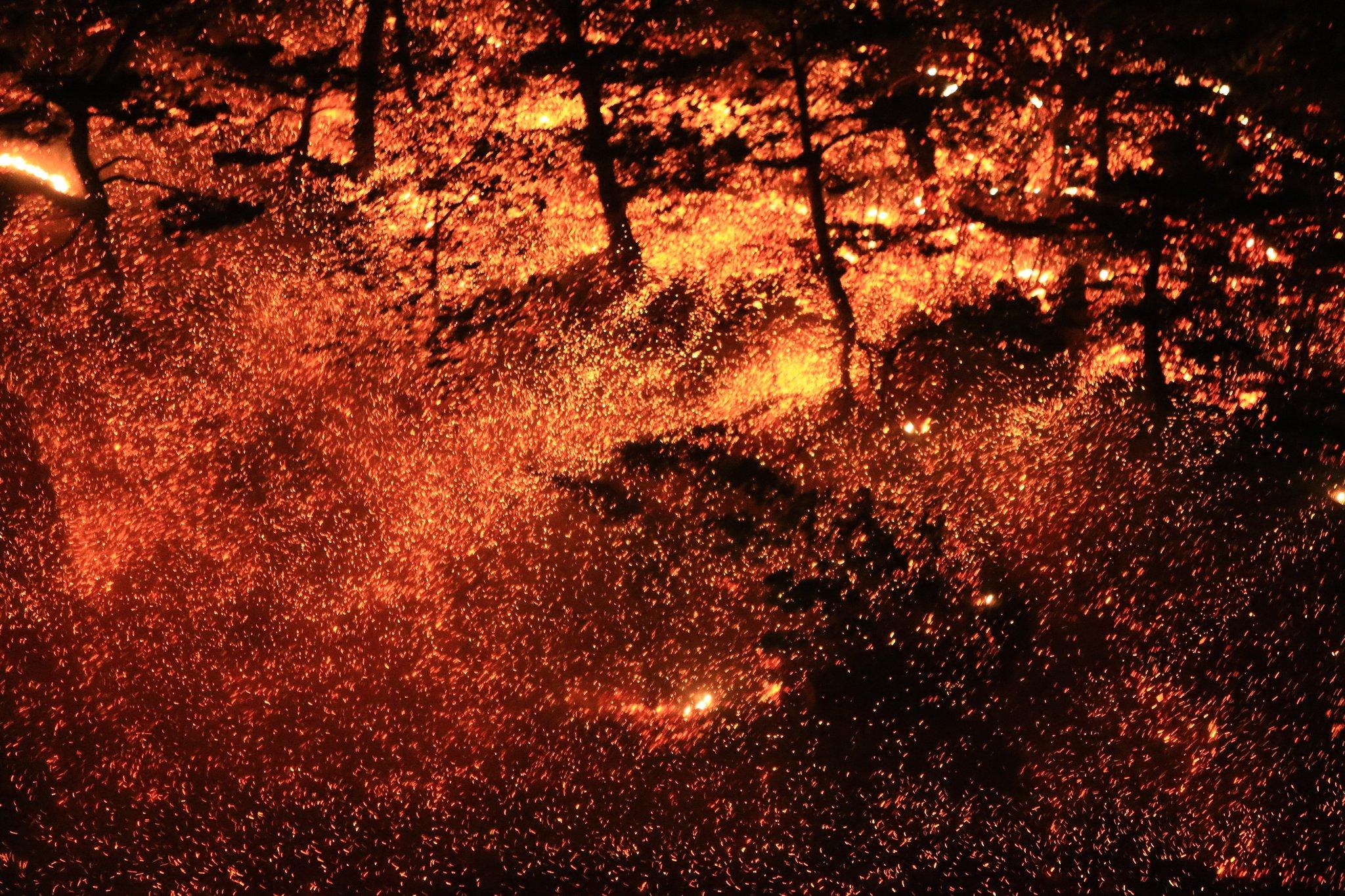 연중 대형산불 겪는 한국..'산불 조심 기간' 이젠 의미 없다[빅토리아머니|슈퍼마리오 토토]