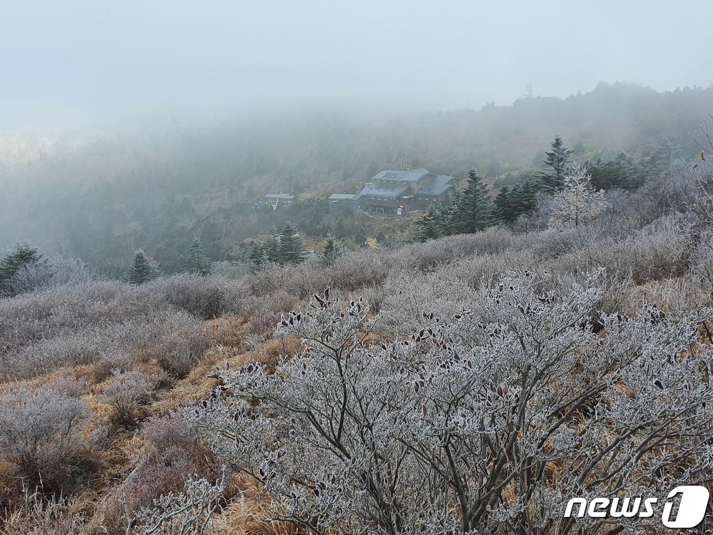 서울·안동 첫 얼음 관측..충청·경상·강원 올가을 최저기온(종합)[Y3 토토|박대리 토토]