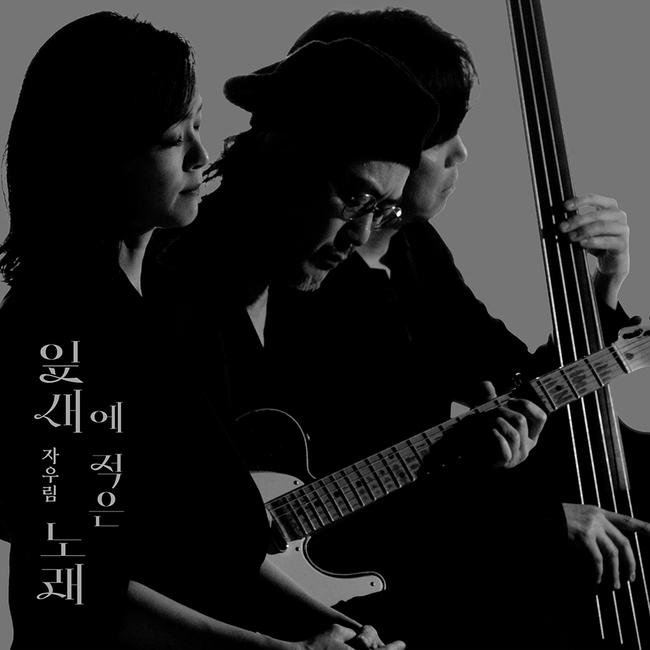 11일(금), 자우림 싱글 앨범 '잎새에 적은 노래' 발매   인스티즈