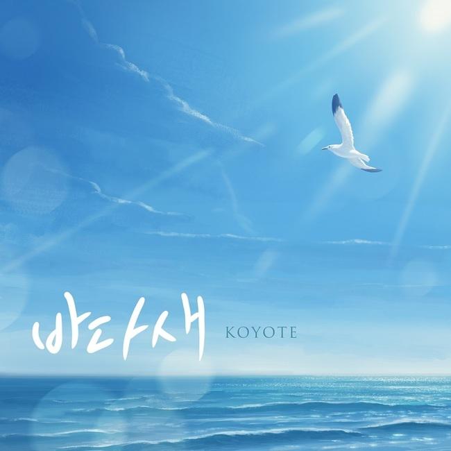 30일(금), 코요태 리메이크 싱글 앨범 '바다새' 발매 | 인스티즈