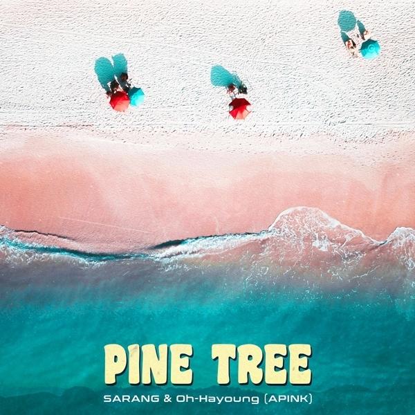 3일(금), Sarang+오하영 디지털 싱글 'Pine Tree' 발매   인스티즈