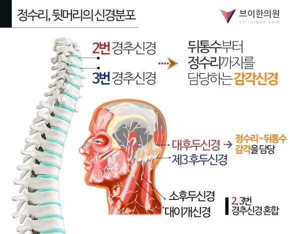 동국제약 판시딜과 함께하는 탈모 바로 알기 캠페인 - 세계일보