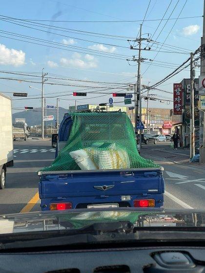 제네시스 트럭