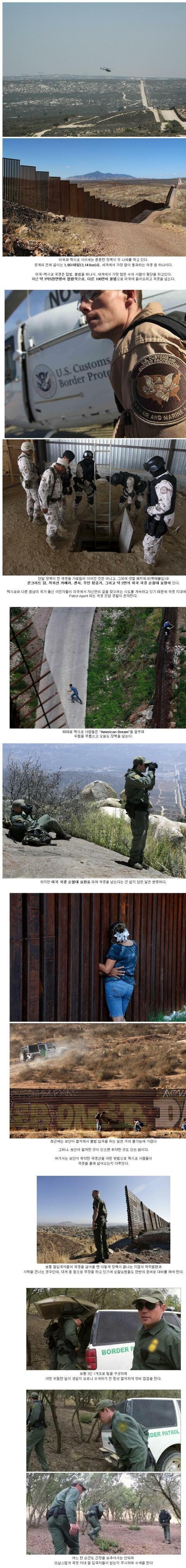 [감동]극한직업) 미국 국경 순찰대
