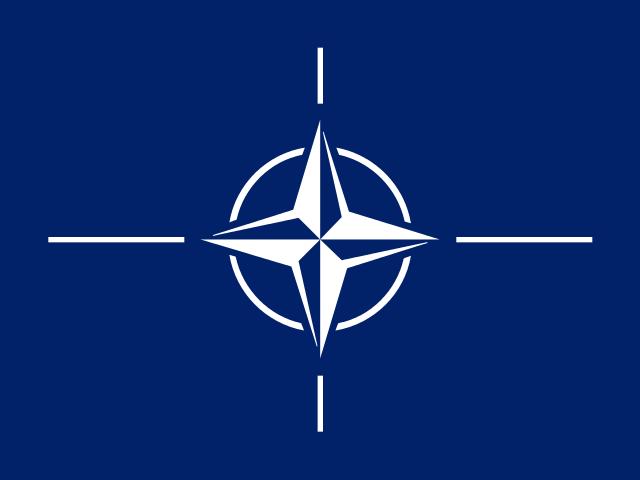 북대서양조약기구(NATO)