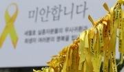 세월호 희생자를 추모하는 노란리본