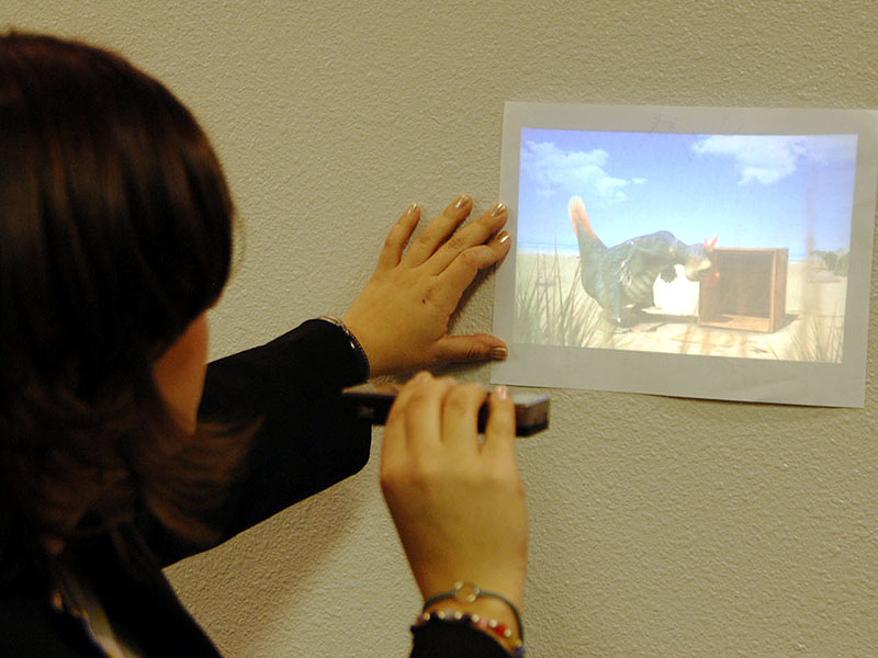 Samsung Pico Projector (with PMP Functionality)