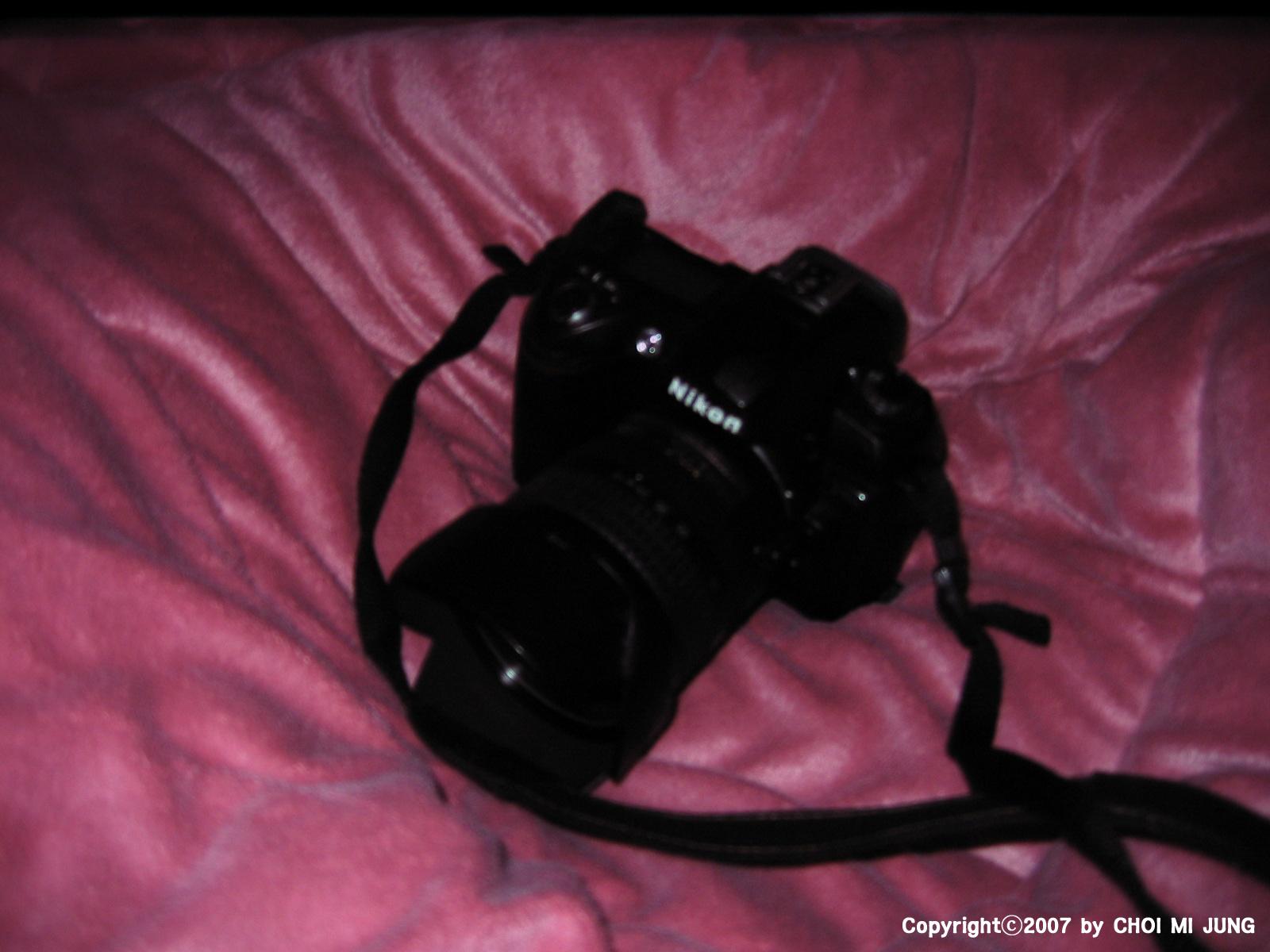 A80, Canon, D70S, Nikon, 디지털카메라, 디카, 캐논 A80, 첫번째 디카, 첫 카메라, 첫번째 디지털 카메라