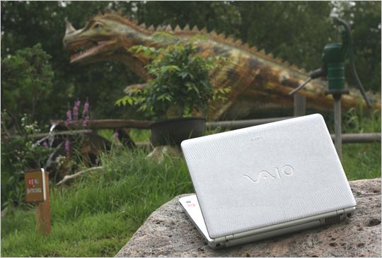 소니 VAIO VGN-CR355/S - 야성이 살아 숨쉬는 실버 리자드 노트북