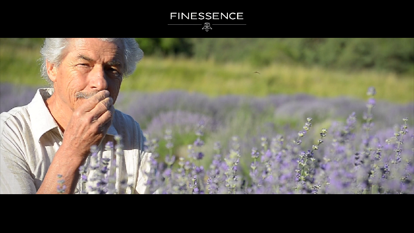 Film Finessence - VF