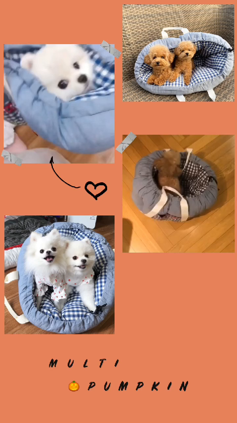 KakaoTalk_Video_20190629_1624_37_925